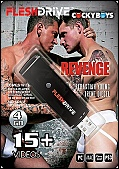 15+ Revenge Video on 4gb usb FLESHDRIVE (116595)